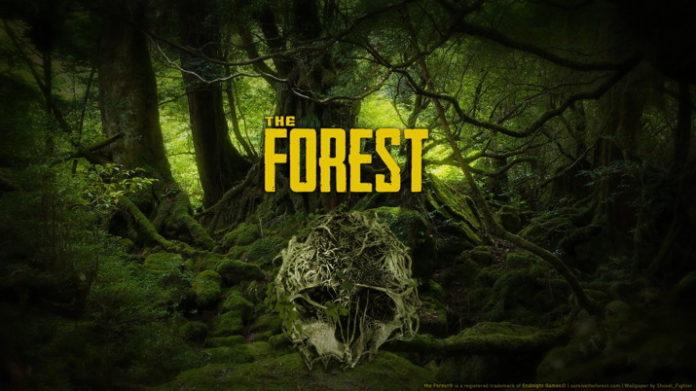Kody do The Forest - nieśmiertelność, latanie, drewno, jedzenie